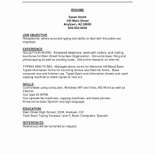 Word Online Resume Template Free Information Technology Resume