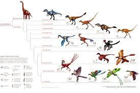 Palaeos Vertebrates Coelurosauria Overview
