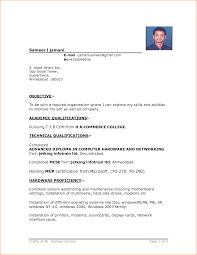 Resume Samples Format Ideas For Job Application 1 Cv Examples For