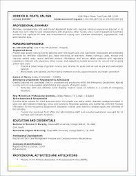 Free Resume Online Download Mesmerizing Free Resume Critique Online Unique Good Cv Free Resume Templates