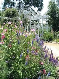 Garden Design Garden Design With Cottage Garden Layout Ideas Cottage Garden Plans