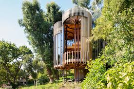 Tree House Malan Vorster Architecture Interior Design ArchDaily