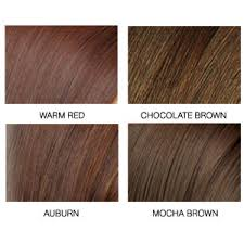 Hazelnut Hair Color Toasted Dark Chart Pictures Ideas