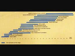Videos Matching Trivandrum Developmental Screening Chart