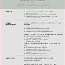 example of best resume excellent resume example best of excellent resume sample davecarter me
