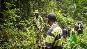 Forest ranger tricks for gay sex