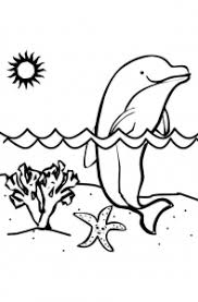 Small Picture Adult dolphin coloring pictures Coloring pages for adults
