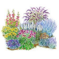 Small Picture No Fuss Sun Loving Garden Plan