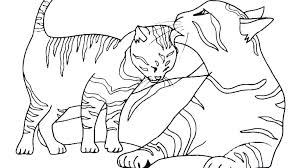 New Kitten Coloring Pages Printable For Your Adults With Picture