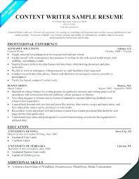 Online Resume Example – Armni.co