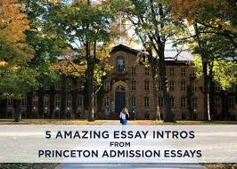 successful essay introductions from princeton admission essays 5 successful essay introductions from princeton admission essays admitsee