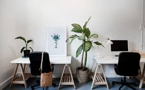 office space manly. Desk Space And Private Office In Creative Manly