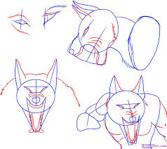 werewolf face drawing. Exellent Drawing How To Draw A Werewolf Face Head Eyes Step 3 Inside Werewolf Face Drawing E