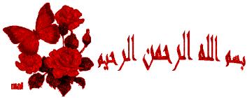 احترمي أسلافك وأخوات زوجك وأهله لتنعمي بحياة رائعة images?q=tbn:ANd9GcS