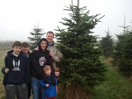 Cut Down Your Own Christmas Tree Farms In San DiegoValley Christmas Tree Farm