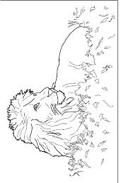 Kleurplaten Leeuwinnen Lwen Ausmalbilder Malvorlagen Animierte