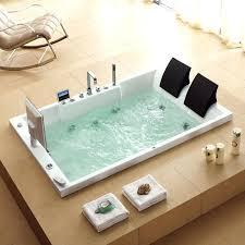 bathtubs 2 person bathtub for bathroom 25 best ideas about two person tub on
