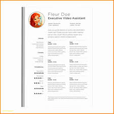 Resume Templates For Mac Pages Free Free Download Cv Template