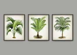 palm tree botanical wall art print set of 3 by quantumprints on palm tree wall art set with palm tree botanical wall art print set of 3 by quantumprints