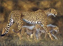 Image result for running cheetah painting