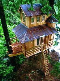 tree house decorating ideas. Livable Tree Houses Download House Plans How To Build A Treehouse Decorating Ideas E