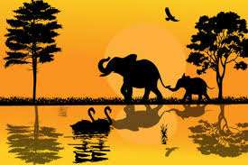 This is svg animation presentation kit for ios. Elephant Silhouette Graphic By Curutdesign Creative Fabrica