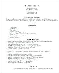 Professional Resume Template Word 2010 Best Resume Templates Word