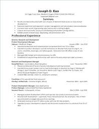 Project Manager Resume Summary New Product Manager Resume Awesome Product Manager Resume Lordvampyrnet
