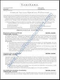 Resume Samples For Finance Professionals Professional User Manual