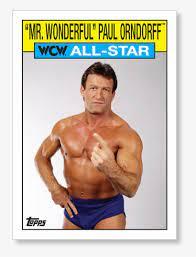 Paul Orndorff Bad Arm Transparent PNG ...