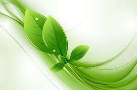 all fee download green leaves vector illustrator webbyarts