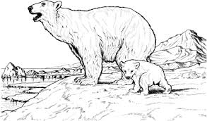 Small Picture Polar Bear Mother and Baby coloring page Free Printable Coloring