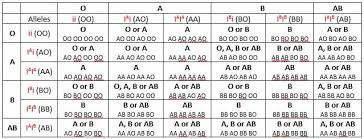 Blood Type Heredity Biology Dictionary