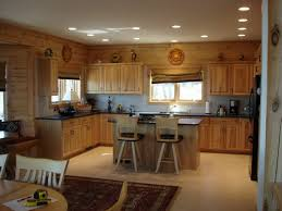 Modern Fluorescent Kitchen Lighting Shop Flush Mount Fluorescent Lights At Lowescom Replacing Kitchen