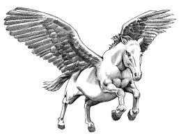 Motiv Tetování Kůň 1382