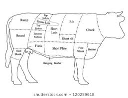Cow Parts Chart Cow Parts Images Stock Photos Vectors Shutterstock