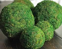 Decorative Moss Balls Moss balls Etsy 53