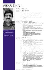 Sales Consultant Resume Samples VisualCV Resume Samples Database Fascinating Resume Sales Consultant