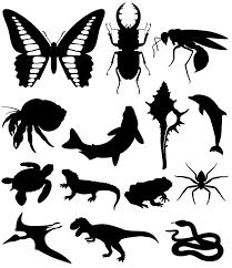 生き物シルエット素材集魚水の生物昆虫は虫類両生類恐竜