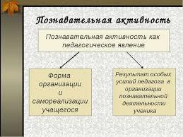 Активизация познавательная Деятельность школьников на уроках  Активизация познавательная Деятельность школьников на уроках курсовая