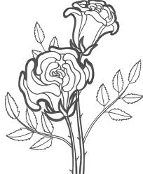 Good rose coloring page 66 about remodel free colouring pages with. Free Printable Roses Coloring Pages For Kids