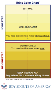 Dehydration Chart Urine Color Urine Color Chart Flowingdata