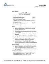 Resume Format For 5 Years Experience In Net Beautiful Resume Css 11b