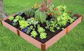 tool free classic sienna raised garden bed 8 x 8 x 11 1 profile