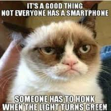 mad cats on Pinterest | Grumpy Cat, Divergent Songs and Cats via Relatably.com