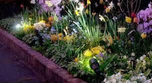 amazing garden lighting flower. garden lighting amazing flower o