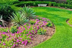 easy garden plants for beginners chic easy flower garden for beginners flower garden for beginners garden easy garden plants