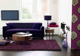 Purple Living Room Rugs Purple Living Room Rugs Salonetimespresscom