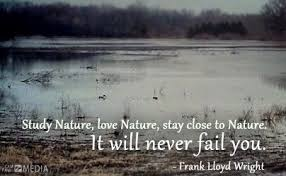 Image result for waterfowl quotes
