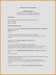 Child Care Resume Skills Unique Sample Job Resume Unique Luxury